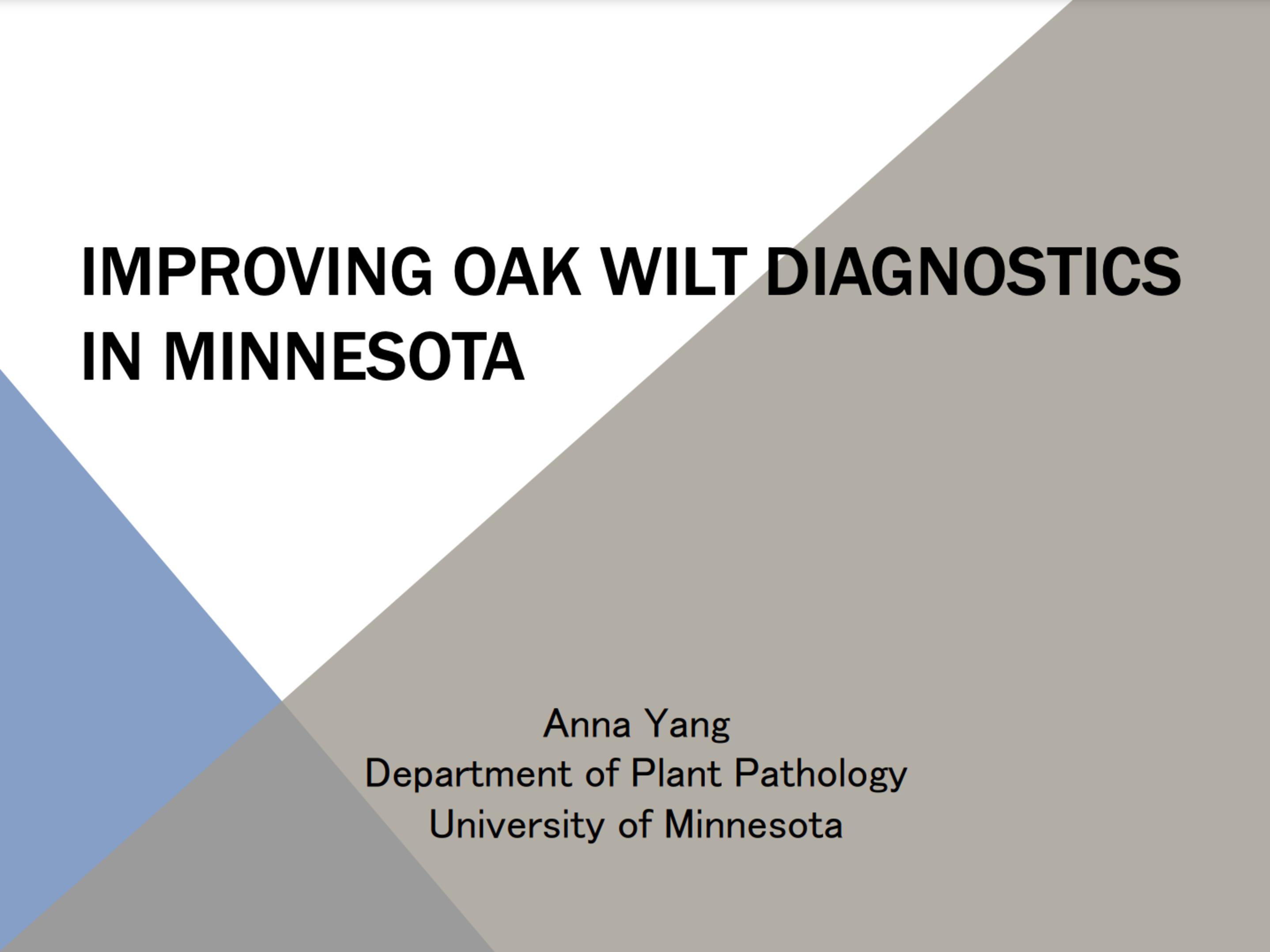 Improving Oak Wilt Diagnostics In Mn