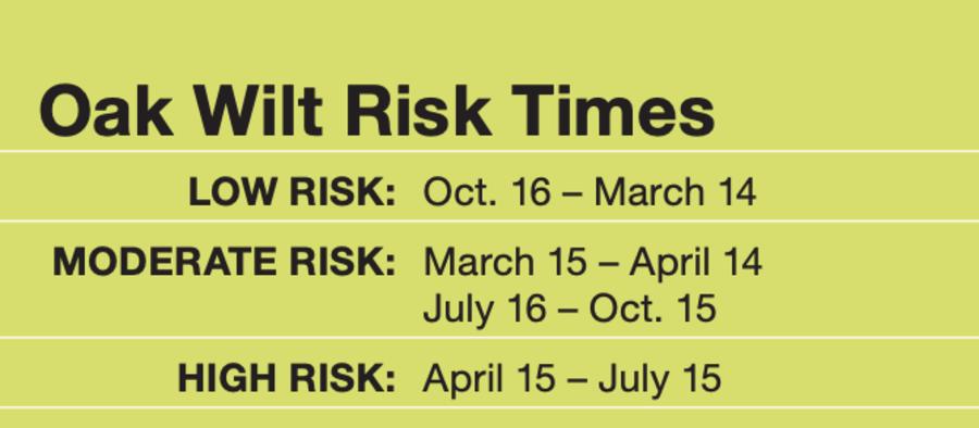 Oak Wilt Risk Times