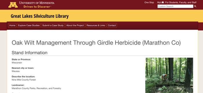 Oak Wilt Management Girdle Herbicide