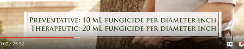 Preventative/Therapeutic Fungicide