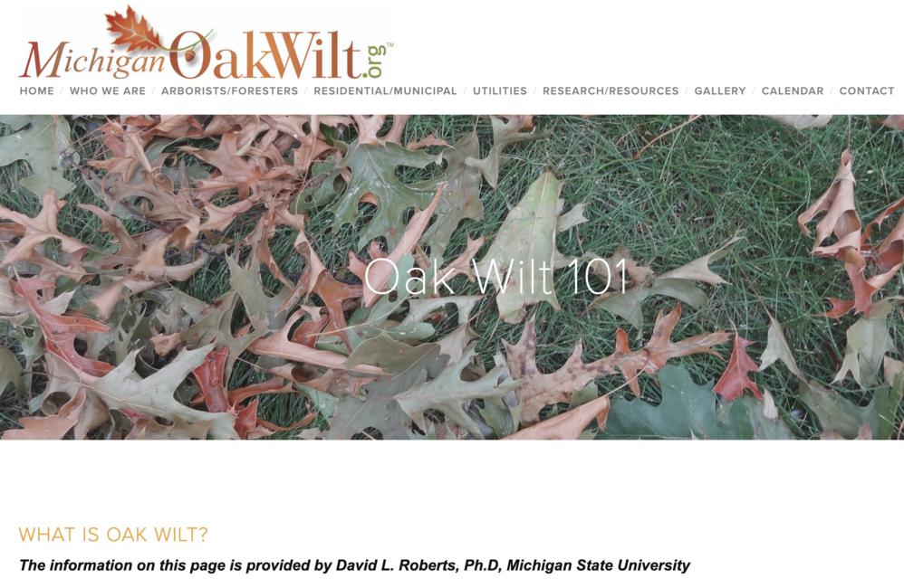 Michigan Oak Wilt