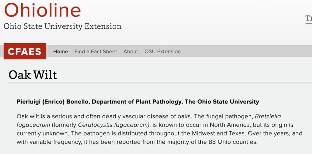 Ohio Oak Wilt