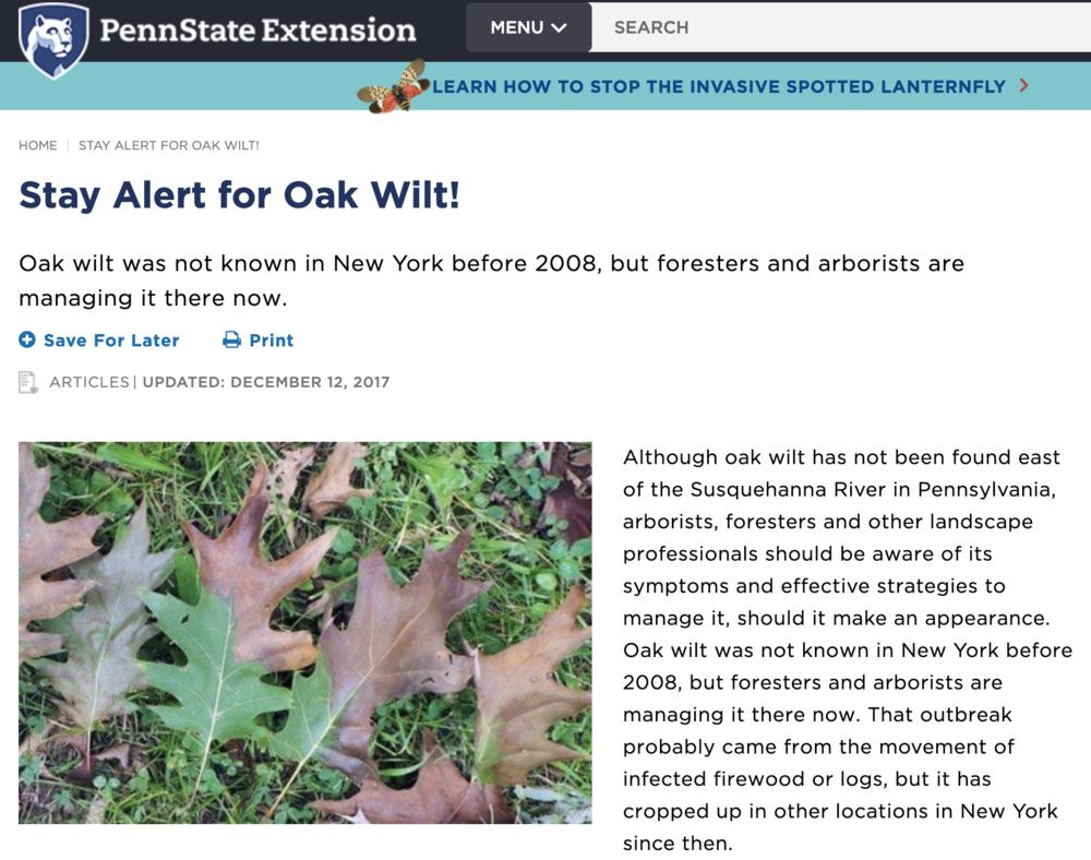 Pennsylvania Oak Wilt
