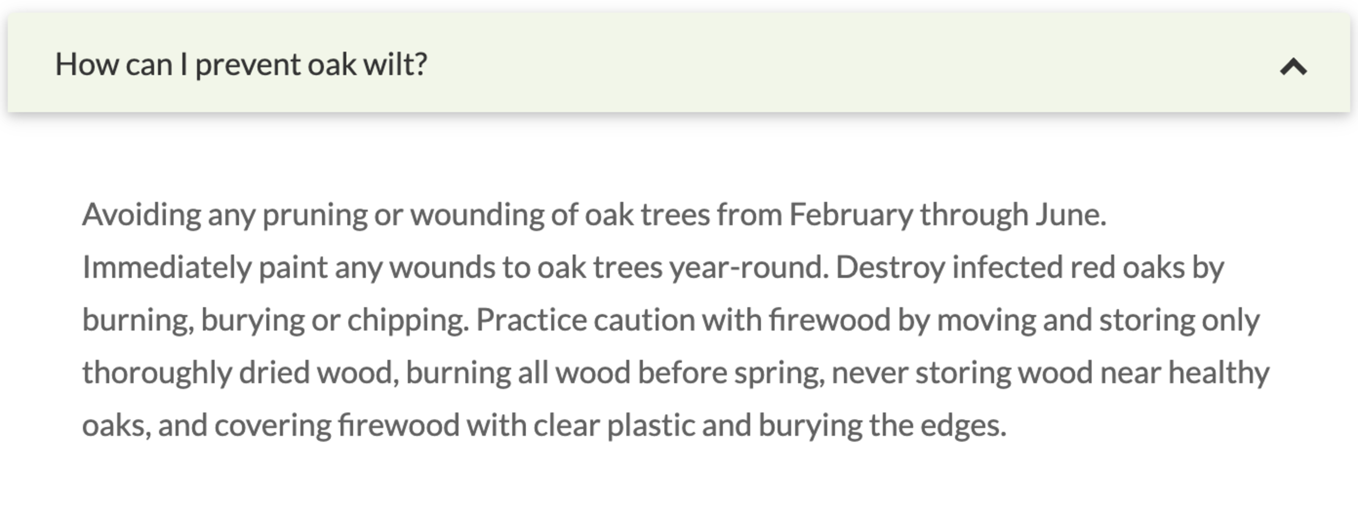 How can I prevent oak wilt?